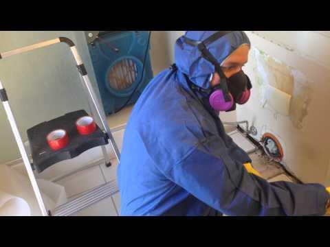 statewide-restoration-services-(srs-pros)