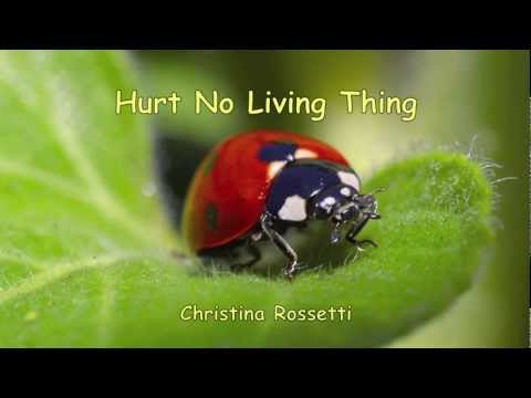 Hurt No Living Thing a poem written by Christina Rossetti