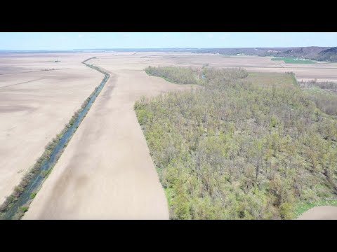 Calhoun County, IL Aerial Tour — 276 Acres±