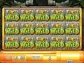 MEGA BIG WIN! 💰 MASSIVE WINNING on Jungle Wild Slot ...