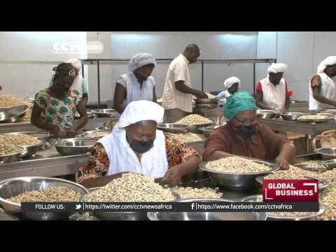 Burkina faso nut processing company lifting women's lives