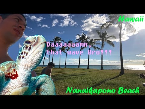 Coasting along the Nanaikapono Beach - DroneWorlds Hawaii 2016