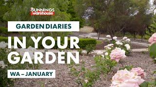 Gardening in January | Western Australia | Bunnings Garden Diary