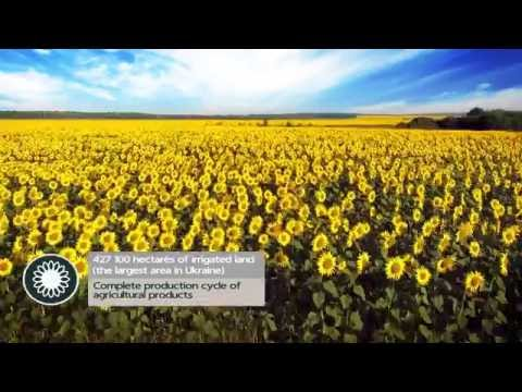 «Kherson Region – Synergy of Prospects»