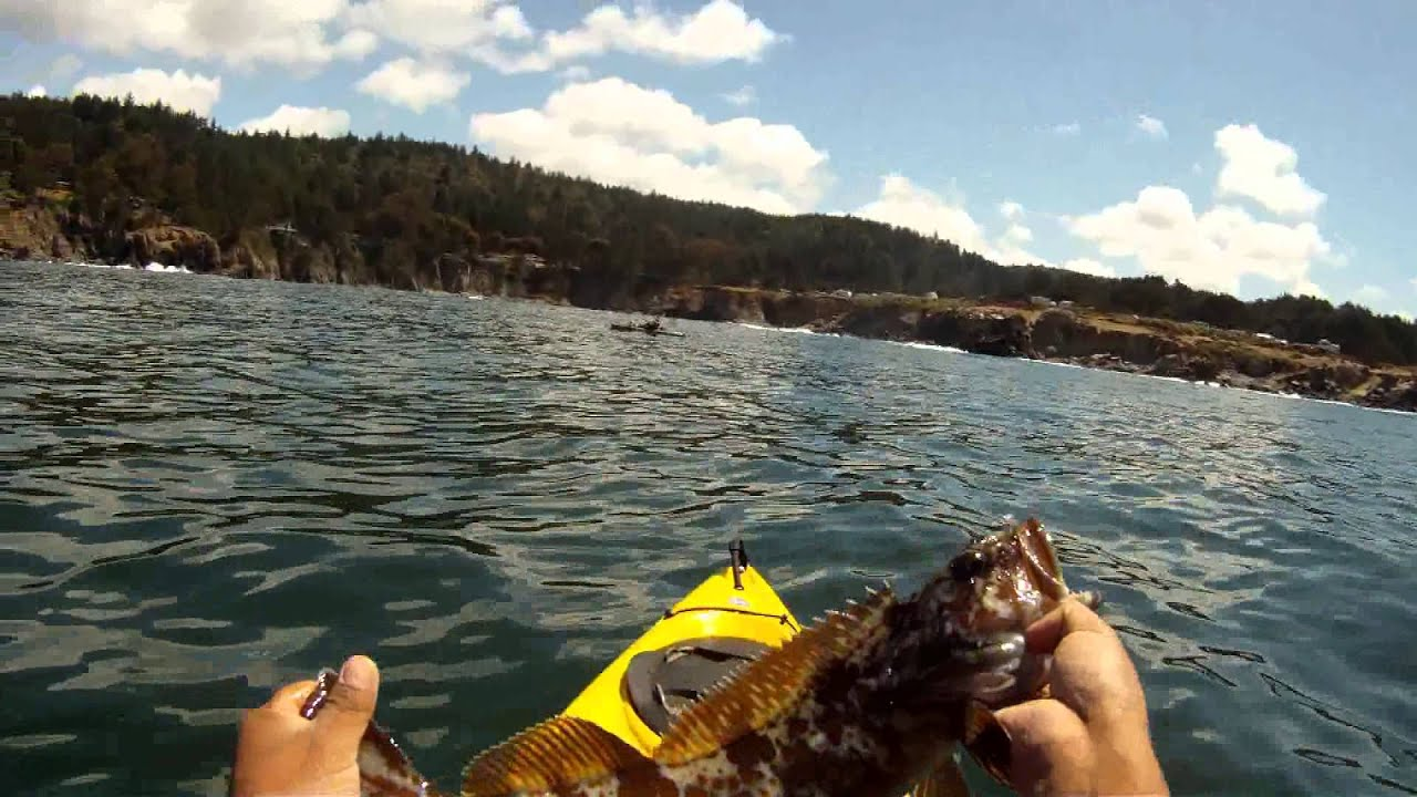 Rock fishing at ocean cove sonoma coast california youtube for California out of state fishing license