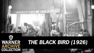 The Black Bird (Preview Clip)