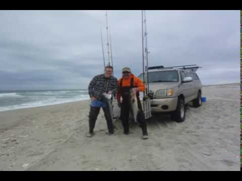 Catching Bluefish At Island Beach State Park New Jersey 5