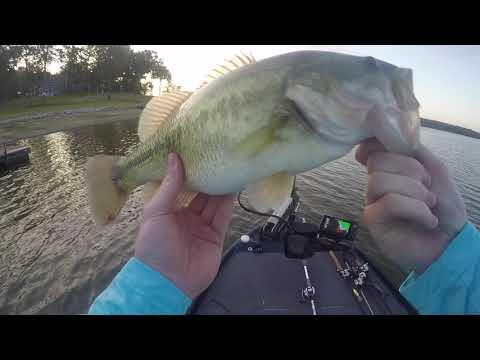 Kentucky Lake Bass Fishing In September