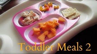 TODDLER MEALS 2