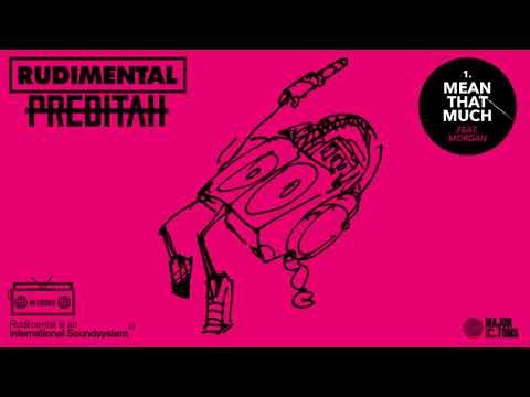 Rudimental & Preditah – Mean That Much (feat. MORGAN)