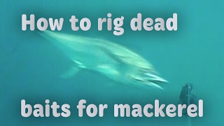 How to rig swimming baits for mackerel