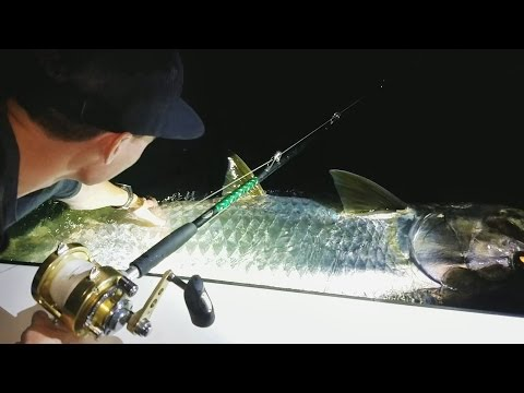 Fishing for the Biggest Fish of My Life! - Vlog (Tarpon Fishing) 150LB+ FISH! Powered by LTB