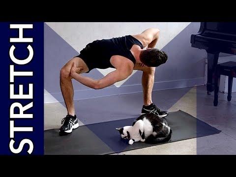 Adelgazar brazos y abdomen assessment