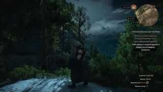 Ведьмак 3 Дикая Охота (Упражнения в высшей алхимии) #85
