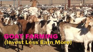 Goat Farming and its Advantages - क्यों बकरी पालन सस्ता एवं फायदेमंद व्यवसाय माना जाता है?