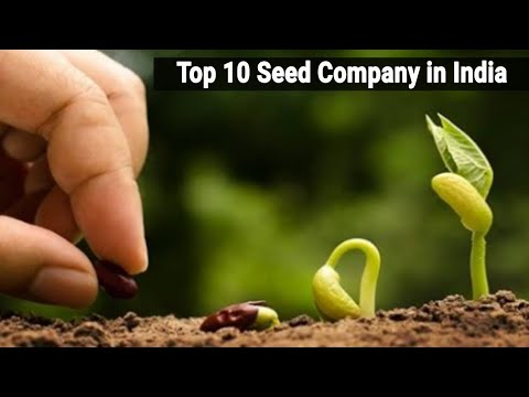 Top 10 Seed Company in India // Agri Duniya