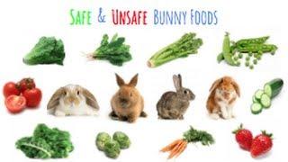 Safe & Unsafe Rabbit Foods