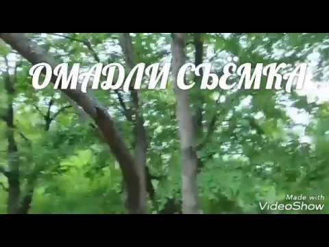 BULBUL SAYRASHI MP3 СКАЧАТЬ БЕСПЛАТНО
