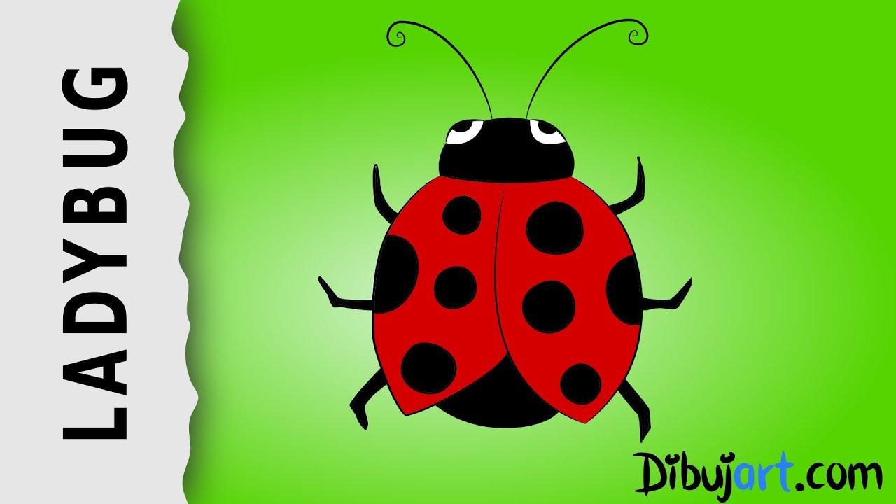 How to draw a Ladybug — Wie zeichnet man einen Marienkäfer ...