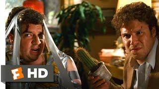 Pineapple Express - I Seen't It Scene (4/10) | Movieclips