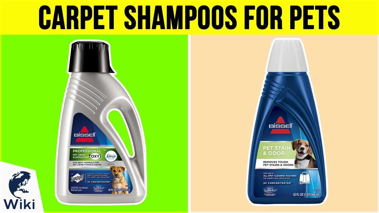 10 Best Carpet Shampoos For Pets 2019