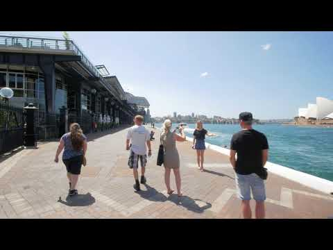 Sydney Video Walk 4K - The Rocks to Barangaroo Reserve Spring 2017