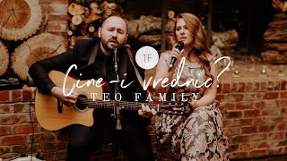 Teo Family - Cine-I Vrednic cover