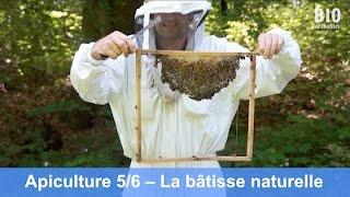 L'apiculture bio au cours de l'année – Bâtisse naturelle (partie 5/6)