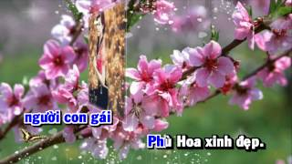 [HD] Karaoke Tìm em cô gái Phù Hoa (Karaoke by Kgmnc)