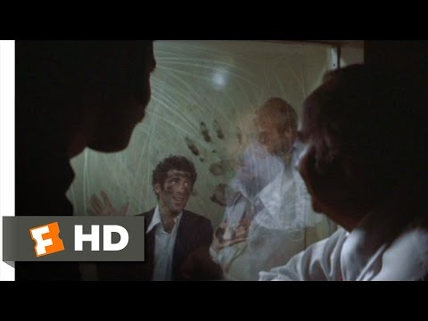 The Long Goodbye 110 Movie   Interrogation 1973 HD