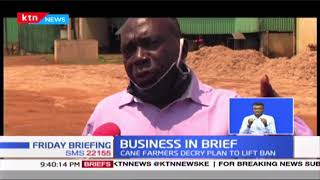 Business Brief: Section of Coffee farmers in Mbooni turn to macadamia for better returns