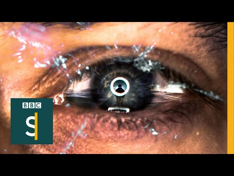 Online child sexual abuse: I couldn't stop looking - BBC Stories