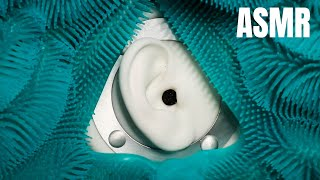 ASMR Tingly Textures in Your Ears