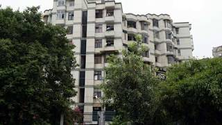 Pg in noida sector 62 without broker