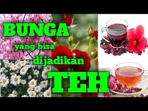 bunga-yang-bisa-dijadikan-teh_tanaman-herbal