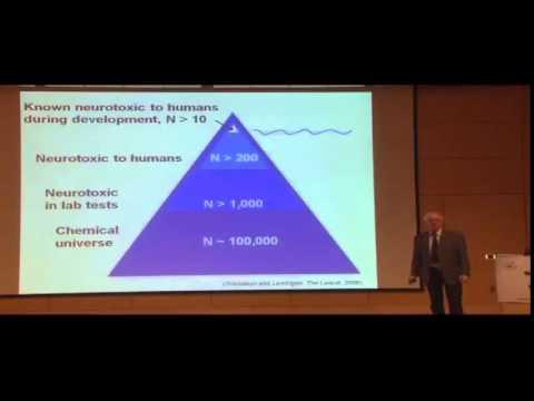 Phillipe Grandjean: How Pollutants Impair Brain Development