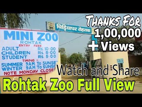 Mini Zoo Rohtak, Haryana, India! Love this place