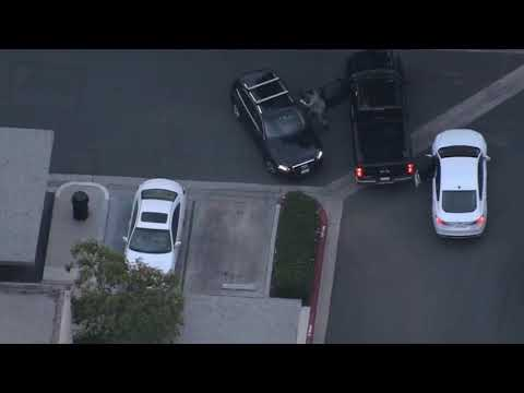 Police Dog gets High speed pursuit suspect / GTA or Real life?