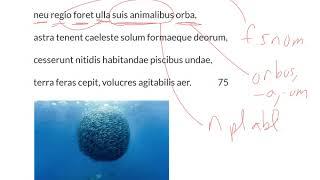 LatinPerDiem Latin Lessons: Publius Ovidius Naso, Metamorphoseon Liber Primus, 20