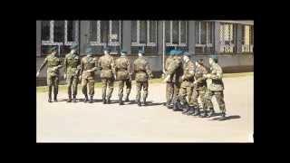 Pokaz Musztry Paradnej - LO w Komornicy