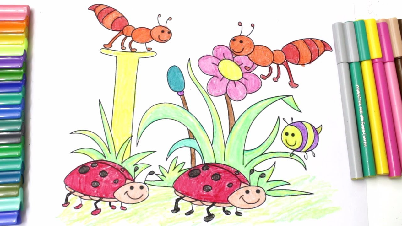 how to draw insects butterfly bee ant lady bug and coloring