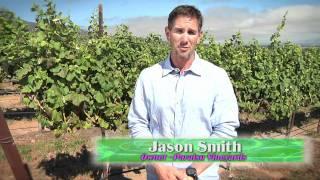 Alvarez Technology:  Managed Services for Paraiso Vineyards, Soledad, Ca