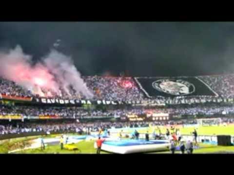 Frases Para O Corinthians Youtube