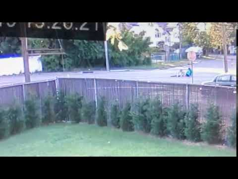 A video of the incident.