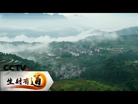 《生财有道》 20180104 乡村古宅新商机 | CCTV财经