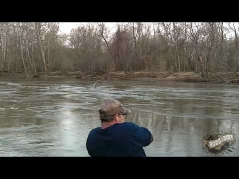 YET MORE DEAD FISH PLUS A PYTHON...!!! from YouTube · Duration:  56 seconds  · 738 views · uploaded on 9/21/2012 · uploaded by Sweetwater Fishing
