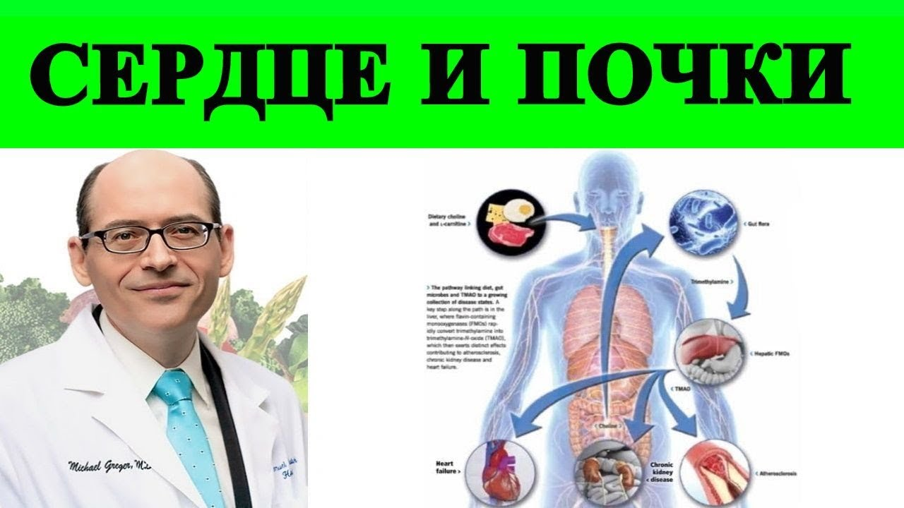 Как лечить сердечную и почечную недостаточность диетой? -  Майкл Грегер