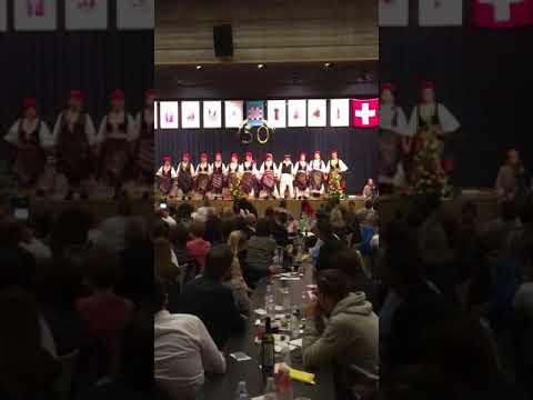 Hkud Posavina Zürich, hkm 50 godina, Dietikon 2017