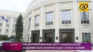 Филиал Академии наук Беларуси откроют в Каире