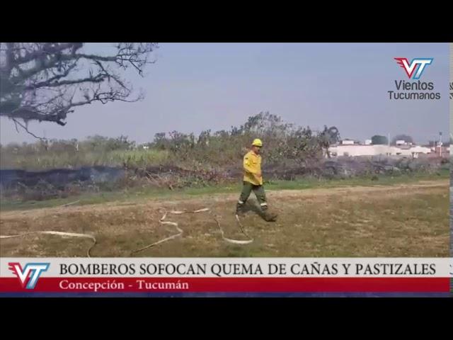 Concepción: Bomberos sofocan quema de cañaverales y pastizales